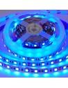 Tira LED 12V color azul 60LED/m 5m