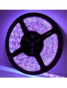 Tira LED 12V UV - ultra violeta 5m 60LED/m IP20